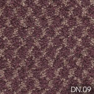 DN 09