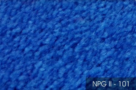 NPG II 101