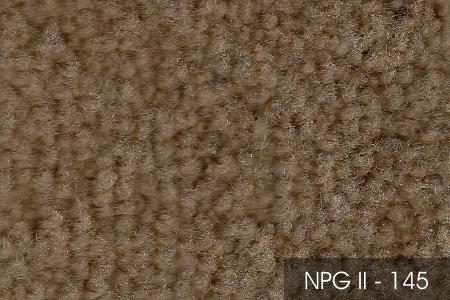 NPG II 145