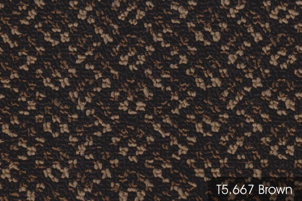 T5 667 BROWN