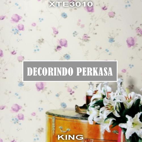 XTE3010